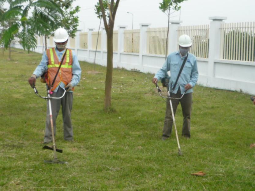 dịch vụ cắt cỏ tại hà nam - dịch vụ duy trì cảnh quan tại hà nam